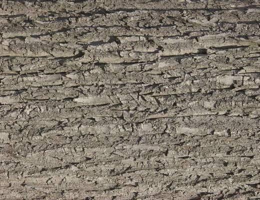 木皮, 木皮贴图, 现代