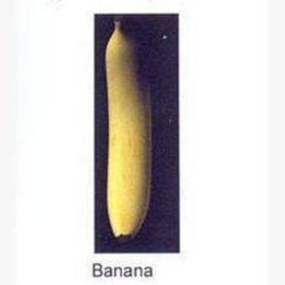 水果, 现代, 香蕉, 食物