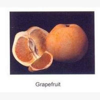 水果, 现代, 西柚, 食物