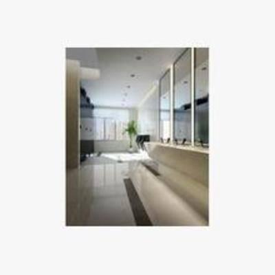欧式, 工装, 洗手间, 吸顶灯, 镜子, 洗手盆