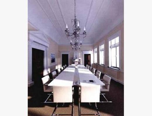 现代, 会议室, 吊灯, 单椅, 挂画, 办公桌
