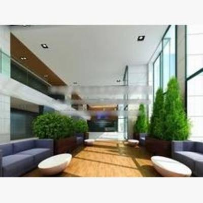 现代, 会客厅, 沙发, 茶几, 盆栽