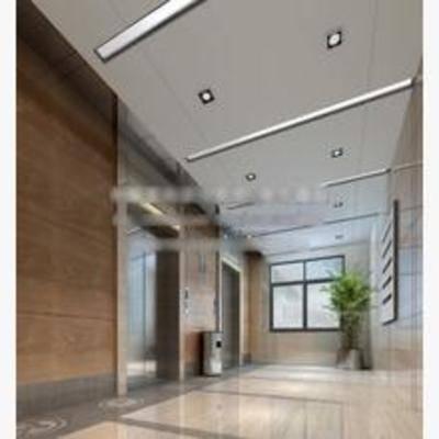 现代, 走廊, 盆栽, 电梯间
