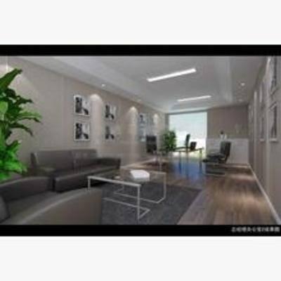 现代, 办公室, 沙发, 茶几, 盆栽, 书桌, 椅子