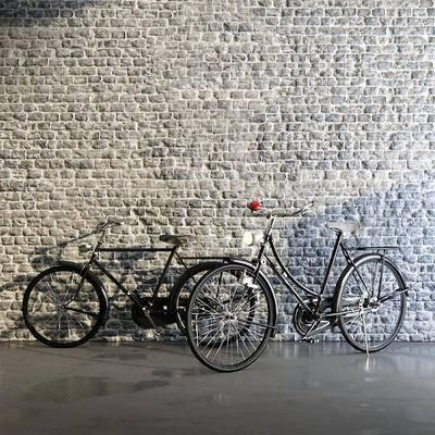 现代单车, 单车, 非机动车
