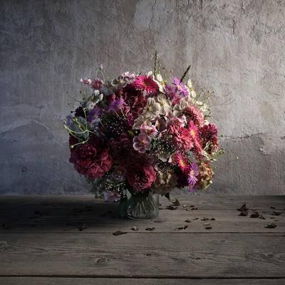 现代花, 盆栽, 花草