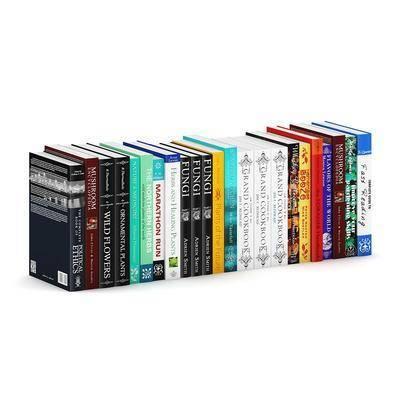 现代书籍, 书籍
