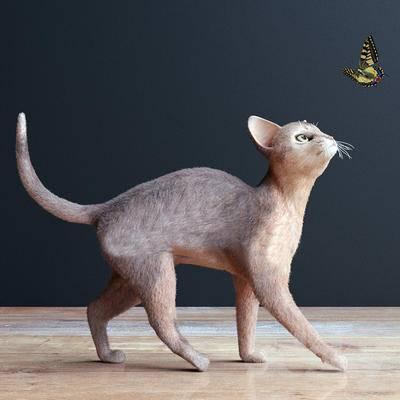现代动物, 动物, 猫, 爬行动物