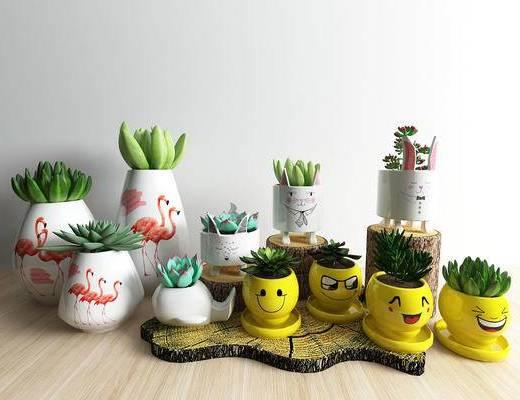 现代, 北欧, 花瓶, 花卉, 多肉, 植物, 陈设品