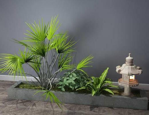 植物, 景觀小品