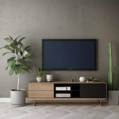 电视柜, 柜架组合, 盆栽植物