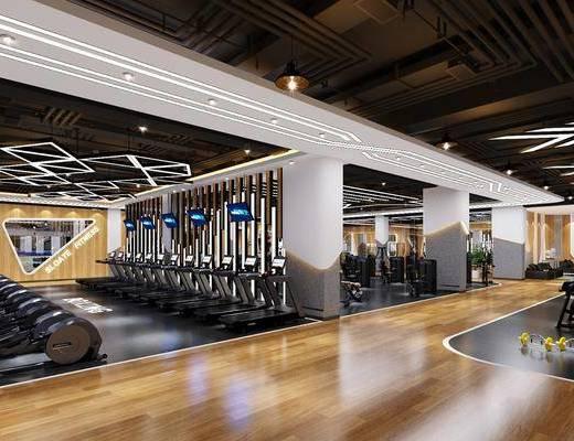 健身房, 健身室, 健身器材, 跑步機, 健身會所, 現代