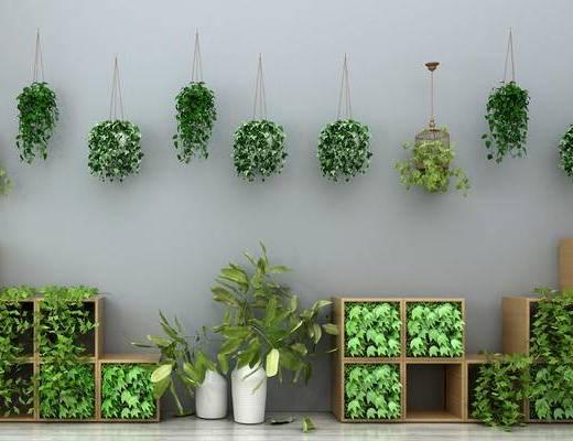 墙饰, 绿植墙饰, 绿植吊灯, 园林小品, 园艺小品, 绿植摆件, 花瓶花卉, 装饰品摆件