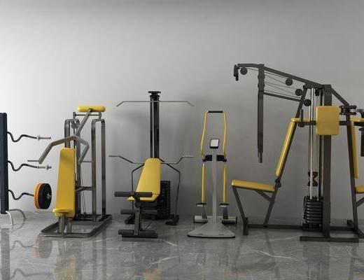 体育器材, 健身器材, 现代