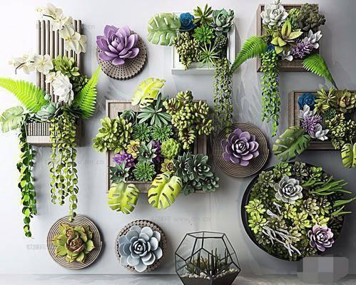现代多肉植物墙面挂饰组合, 多肉墙, 多肉, 盆栽, 多肉装饰