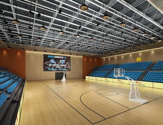 体育馆, 篮球馆, 运动馆, 赛场
