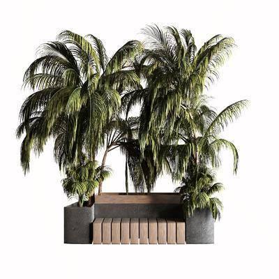 现代户外椅, 棕榈树