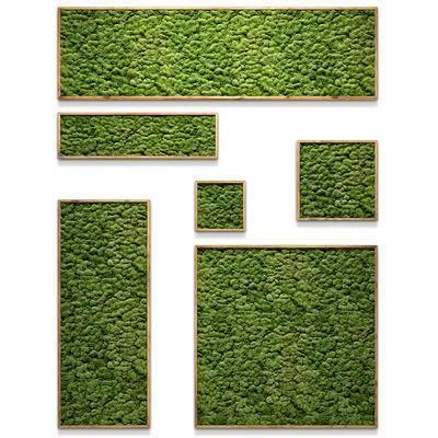 植物墙, 背景墙, 植物背景墙, 绿植, 现代