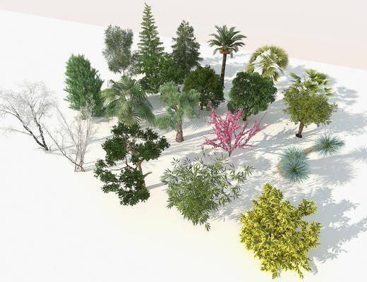 樹木, 植物, 綠植, 現代室外樹木3d模型