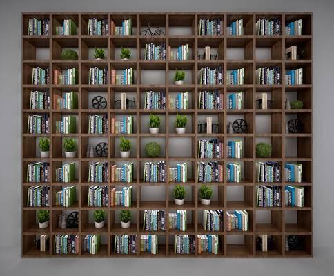 现代, 书柜, 盆栽, 摆件, 书籍, 书本, 书架