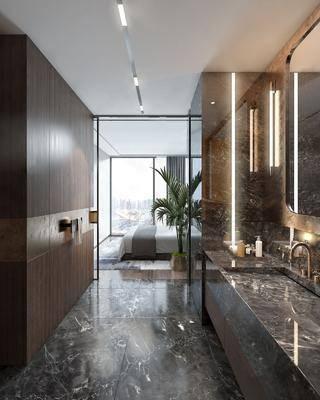 现代, 酒店, 客房, 卫生间, 卫浴组合