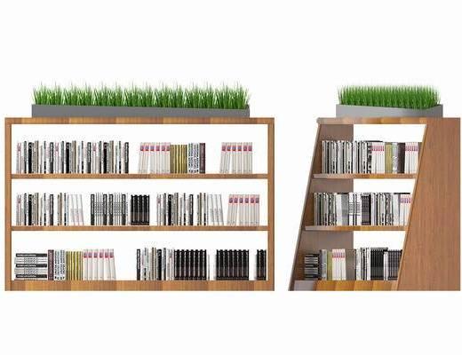 书柜, 装饰柜, 书籍, 盆栽, 现代