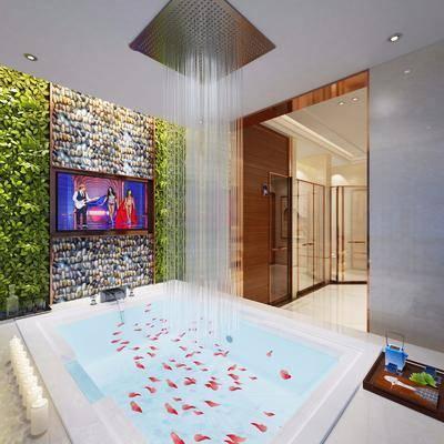 卫生间, 酒店卫生间, 现代酒店卫生间, 浴缸, 卫浴小件