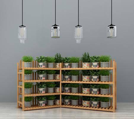 花架, 置物架, 装饰架, 装饰花架, 盆栽, 植物绿植, 吊灯, 玻璃吊灯, 现代