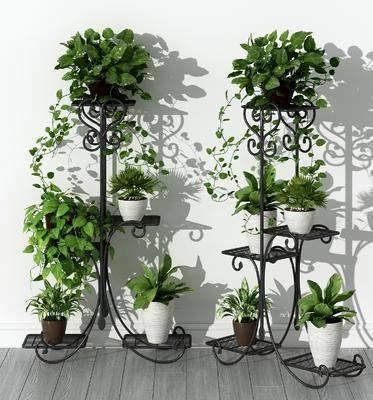 现代植物架, 植物架, 盆栽