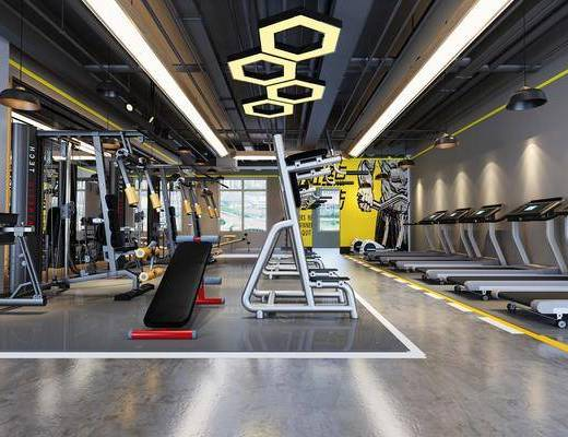 健身室, 运动器械, 吊灯, 跑步机