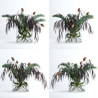 花瓶, 花卉, 盆栽, 绿植