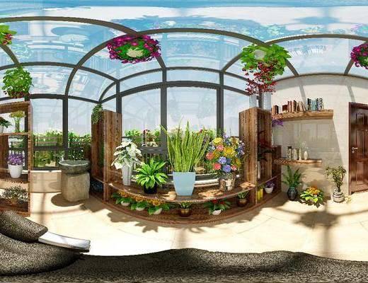 阳台, 阳光房, 植物, 花架