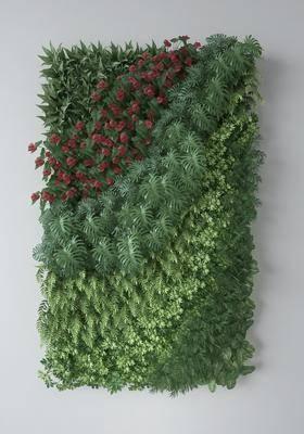 绿植墙, 植物墙