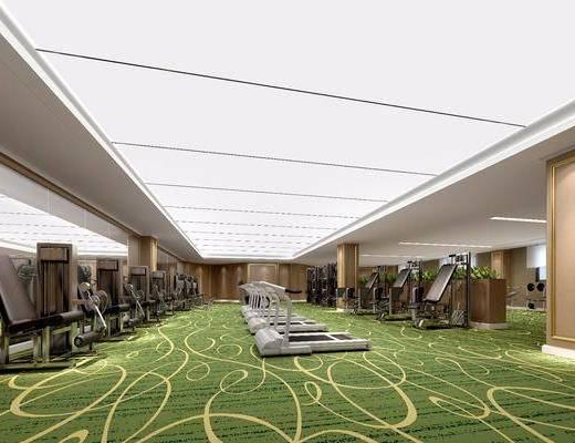 健身室, 现代健身室, 会所, 跑步机, 设备, 运动设备, 现代