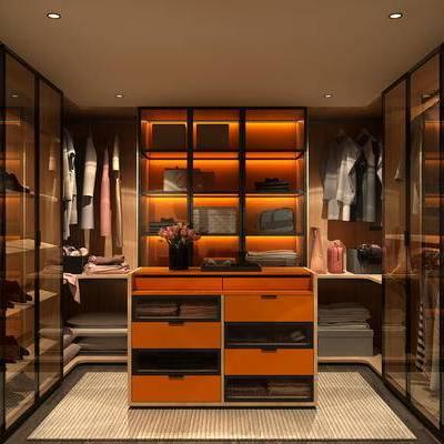 现代, 衣帽间, 服饰, 鞋子