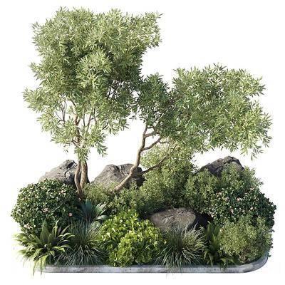 现代植物堆景观组合