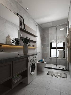 卫生间, 花洒, 马桶, 洗衣机, ?#35789;?#21488;, 花瓶, 绿植植物, 摆件, 装饰品, 陈设品, 现代
