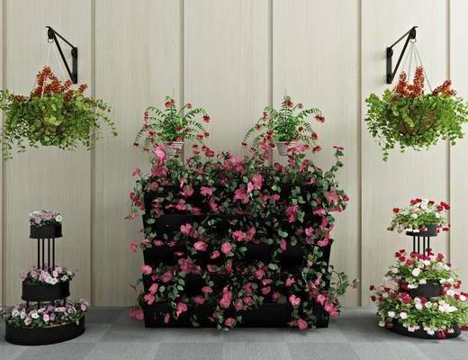 绿植盆栽, 植物花卉, 现代