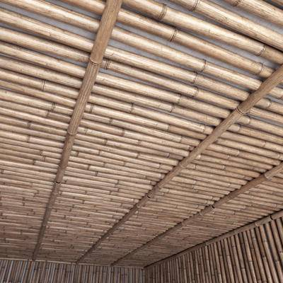 竹棚, 竹子, 现代, 竹