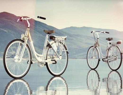 机动车, 自行车, 现代