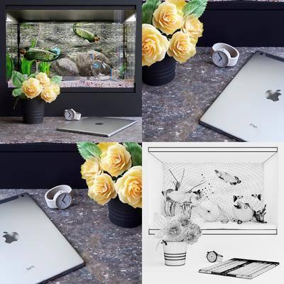 鱼缸, 花瓶, 花卉, 植物, ipad, 鱼, 现代