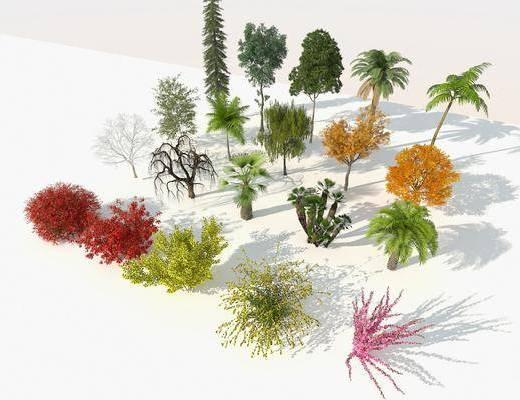 景觀樹, 樹木, 綠植植物, 庭院樹, 行道樹, 鳥瞰樹, 樹木組合, 現代
