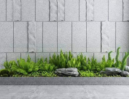 园林景观, 花草, 背景墙