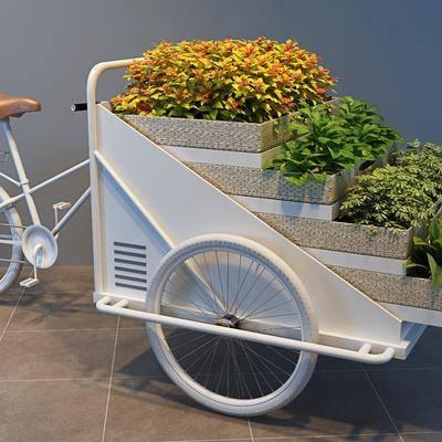 现代三轮花车, 现代, 植物, 三轮车