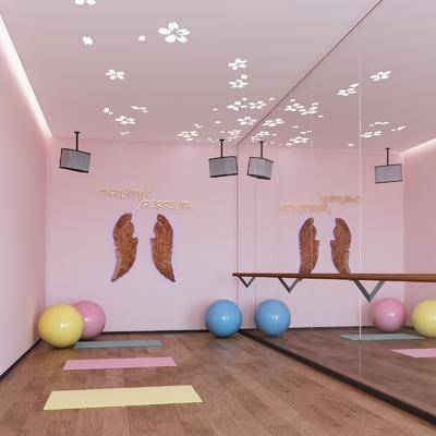 舞蹈室, 墙饰, 瑜伽球, 现代