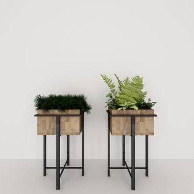 现代盆栽, 现代, 植物, 盆栽