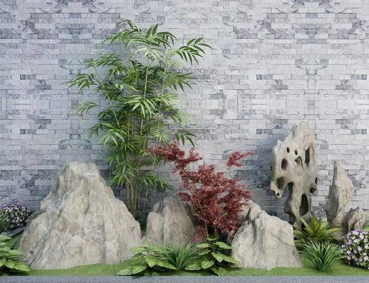 景观小品, 假山, 荷花, 植物