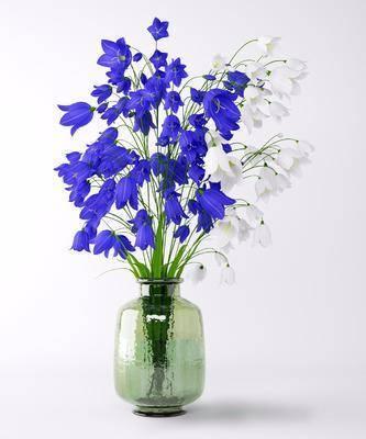 现代花瓶, 花卉, 花瓶, 现代