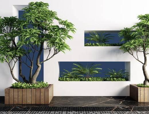 植物, 树木, 植物组合