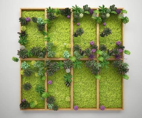 现代植物墙, 植物墙